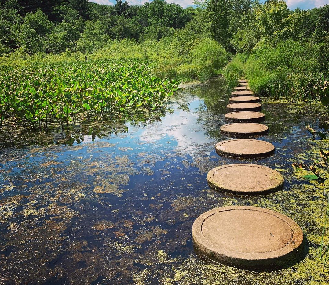 Stepping Stones To Success: 3 Key Qualities To Build Your Personal Pathway To Peace